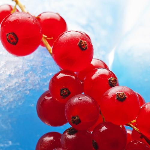 Tiefkühlkost, Fruchtfoto